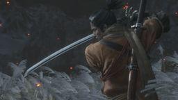 《只狼 影逝二度》葡京开户 视频攻略 奖杯心得 物品收集