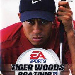 泰戈·伍兹高尔夫PGA巡回赛2004