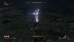 《只狼 影逝二度》水生的凛忍杀视频攻略 水生的凛出现地点