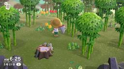 《集合啦!动物森友会》素材岛一览 素材岛种类一览
