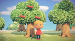 《集合啦!动物森友会》植树造林指南 动森合理种树方法