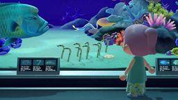 《集合啦!动物森友会》海洋生物全图鉴 新增海洋动物出现时间
