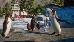 《動物園之星》水生風DLC將于12月8日推出 加入王企鵝等新動物