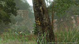 《怪物猎人 崛起》神圣独角仙位置攻略 神圣独角仙在哪里