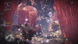 《怪物猎人世界》全环境生物捕获位置 全生物抓捕方法