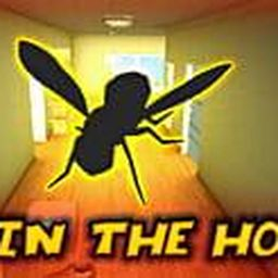 Fly in the House