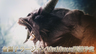 《怪物猎人世界 Iceborne》金狮子实机演示公开 预计10月10日配信