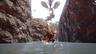 《怪物猎人 崛起》妃蜘蛛泥翁龙简短演示公开 沙原部分场景展示