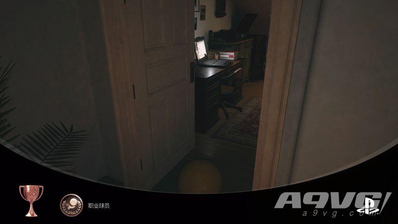 《生化危机8 村落》职业球员奖杯成就视频攻略