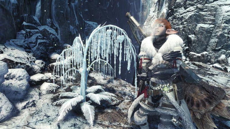 《怪物猎人世界 冰原》两周年庆典活动明日开启