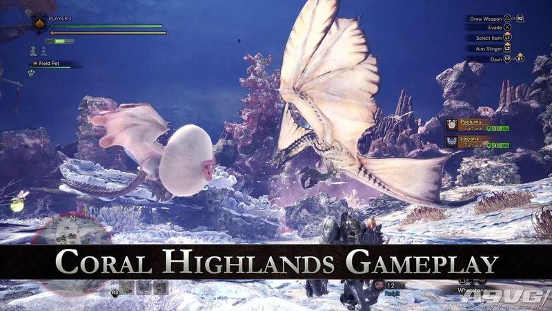 《怪物猎人世界》试玩视频:陆珊瑚之台地狩猎浮空龙风漂龙