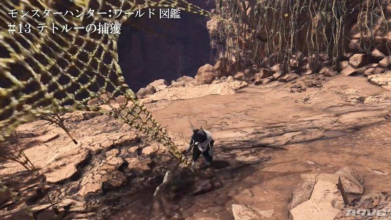 《怪物猎人世界》环境与怪物生态图鉴短片集第二弹