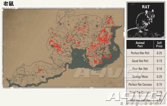 《荒野大镖客2》全动物分布攻略 动物分布地图 出没位置