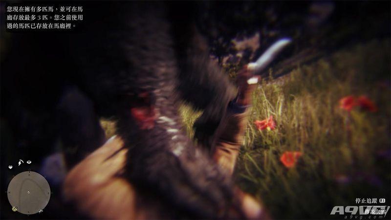 《荒野大鏢客2》傳說動物出沒地點攻略 傳說動物在哪